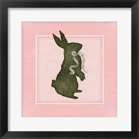 Framed Bunny - Pink