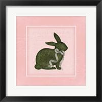 Framed Bunny II - Pink