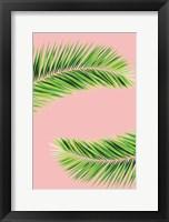Framed Pink Palm II