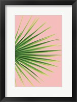 Framed Pink Palm III