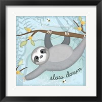 Framed Slow Down Sloth