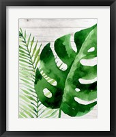 Framed Banana Leaf I