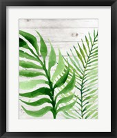 Framed Banana Leaf II