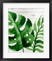 Framed Banana Leaf III