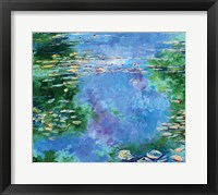 Framed Water Lilies III