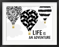Framed Life is an Adventure