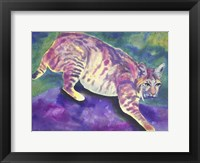 Framed Bobcat