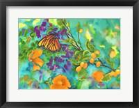 Framed California Monarch