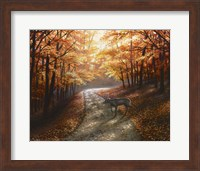 Framed Autumn Bliss
