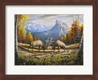 Framed Wild Frontier
