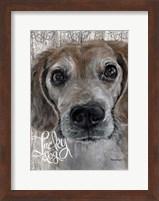 Framed Lucky Dog Beagle