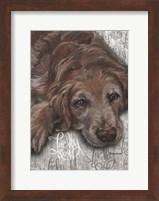 Framed Lucky Dog Dark Golden