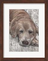 Framed Lucky Dog Golden