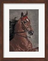 Framed Bay Horse