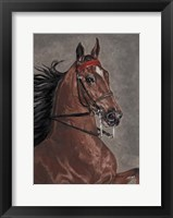 Framed Bay Horse