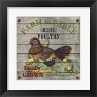 Framed Farm to Table - Poultry