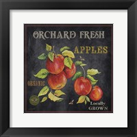 Orchard Fresh Apples Framed Print