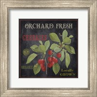 Framed Orchard Fresh Cherries
