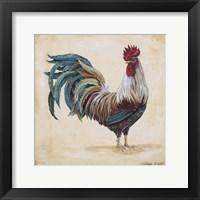 Framed Rooster - F