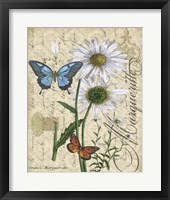 Framed Botanical - Daisey Grande Marqueritte Damask