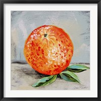 Framed Abstract Kitchen Fruit 6