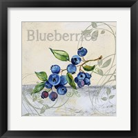 Tutti Fruiti Blueberries Framed Print