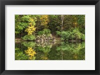 Framed Autumn Forest Reflections Lake Side
