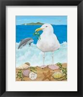 Framed Gull Envy
