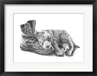 Framed Puppy and Boot