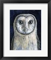 Framed Barn Owl I