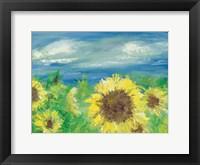 Framed Eastern Plains Sunflower
