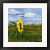 Framed Plains