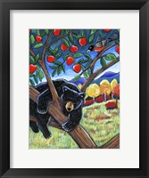 Framed Bear In The Apple Tree