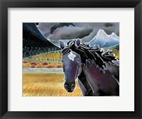 Framed Black Horse At Night
