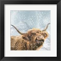 Framed Highland Cow 1