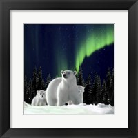 Framed Polar Family 2