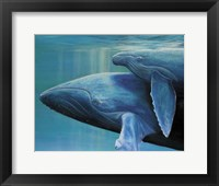 Framed Mother and Calf