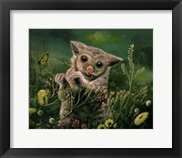 Framed Peeking Possum