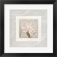 Pink Ivory Portrait 2 Framed Print