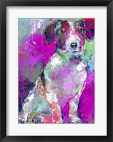 Framed Art Russell Terrier