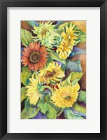 Framed Variety of Sunflowers