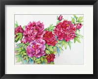 Framed Study of Red Peonies