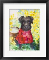 Framed Zverg Schnauzer Dog