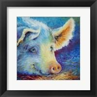 Framed Baby Blues Piggy
