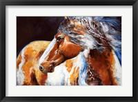 Framed Mohican Indian War Horse