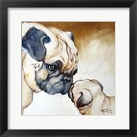 Framed Pug 2