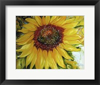 Framed Sundown Sunflower
