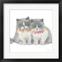 Cutie Kitties VIII Framed Print