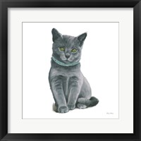 Cutie Kitties VI Framed Print