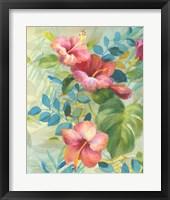 Framed Hibiscus Garden II